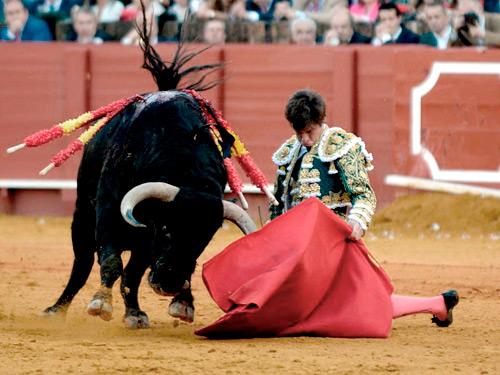 """Muere el toro """"Orguillito"""" de Garcigrande"""