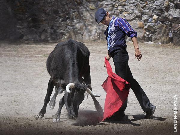 Silis: Cuatro ganaderías en cinco días