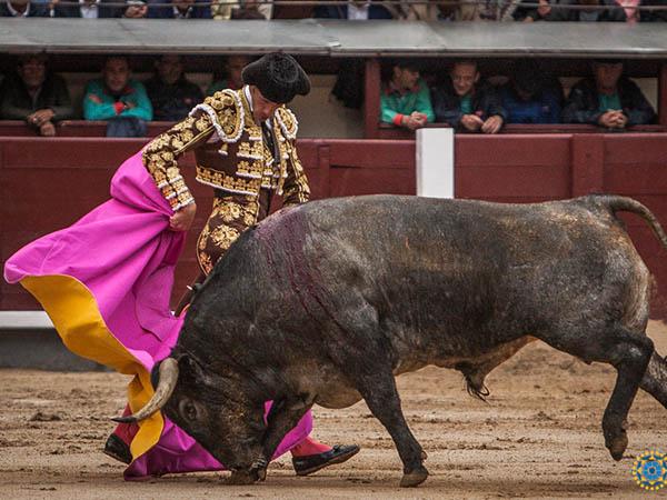 Moral corta oreja y El Cid cae herido grave