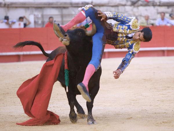 San Román cae herido en Nimes