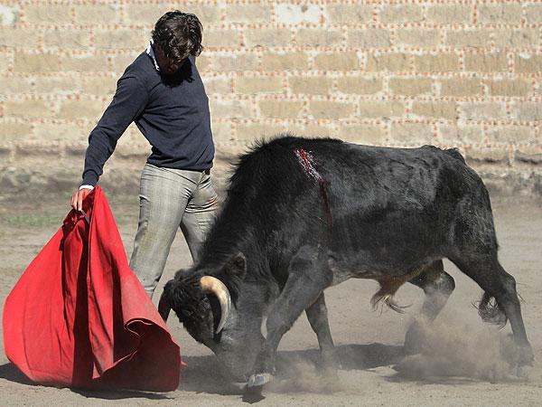 Gallo hace campo en García Méndez
