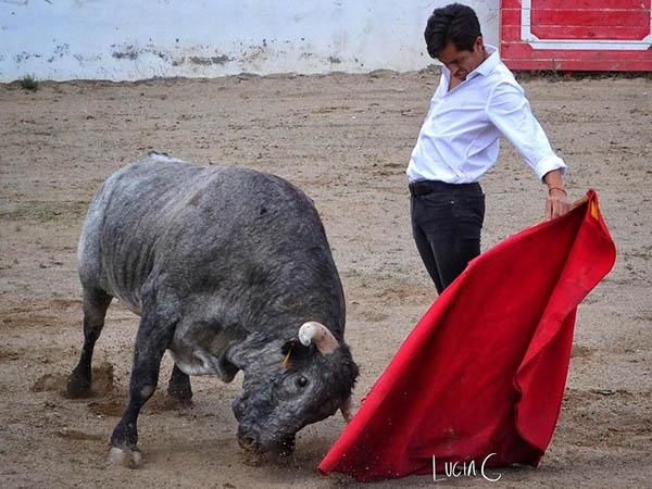 Juan Fernando mantiene su actividad taurina