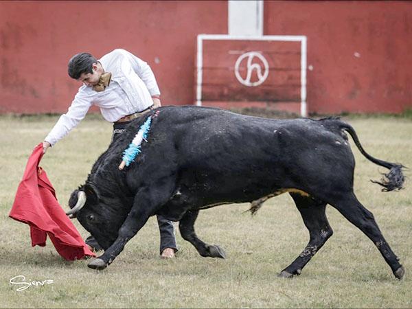 Juan Luis Silis lidia un toro de Rancho Seco