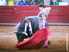 En Garrido hay un torero para México