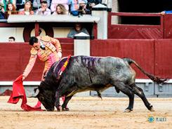 Detalles en Madrid ante los victorinos