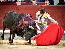 Tarde de voluntad en Madrid