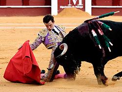 Miguel Aguilar corta una oreja en Málaga