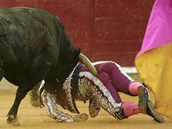 De la Viña lucha por su vida en Zaragoza